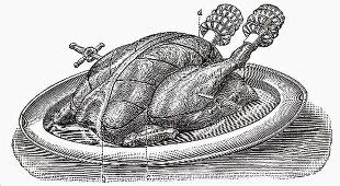 Roast turkey (Illustration)