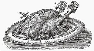 Roast turkey (Illustration)