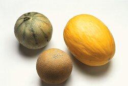 Charentais melon, honeydew melon and Galia melon