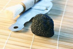 Black truffle with truffle slicer and truffle brush