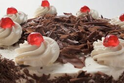 Black Forest gateau (close-up)