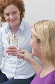 Two friends clinking glasses of sparkling wine