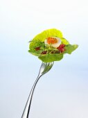 Salad, quail's egg and red caviar on a fork