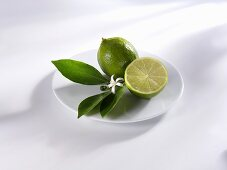 Limes with leaves and flower