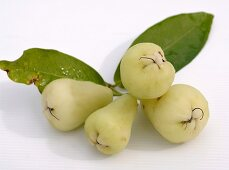 Four green Java apples with leaves