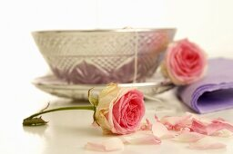 Silver teacup and saucer and pink roses