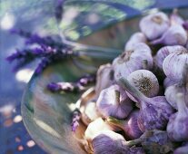 Garlic and lavender flowers in a dish