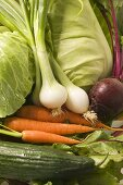 Carrots, spring onions, beetroot, cabbage and cucumber