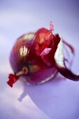 Red onion, partly peeled
