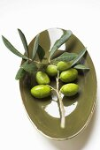 Olive sprig with green olives in bowl