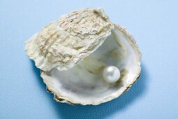 Pearl in oyster shell