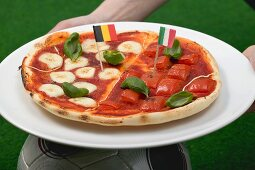 Hands holding tomato and mozzarella pizza with flags