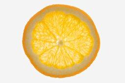 A slice of mandarin orange (backlit)