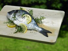Bream with lemon slices and rosemary for grilling