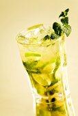 Mojito in glass