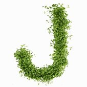 The letter J in cress
