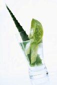 Aloe vera leaf with sap in glass