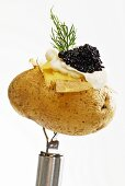 Potato with caviar, close-up