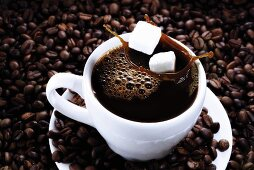 Cup of coffee on coffee beans