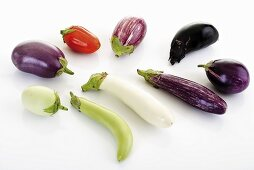 Various types of aubergines
