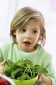 Boy (3-4) holding bowl of fresh basil, close-up