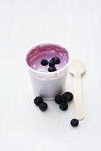 Blueberry yoghurt in opened pot