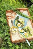 Blattsalat mit gebratenem Spargel und Eiern auf Tablett im Gras