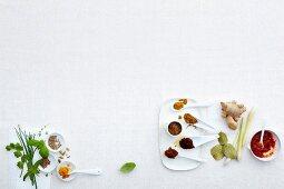 Various herbs, spices and seasonings