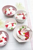 Elderflower sorbet with redcurrant and honey compote