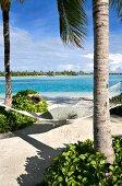 Hammock tied to tree on beach in Veligandu Huraa Island, Maldives