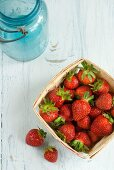 Fresh Picked Maine Strawberries in a Basket
