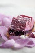 Cherry cake with blueberry cream