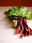 Fresh rhubarb and kitchen twine