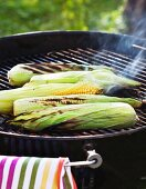 Corn on the cob on a barbecue