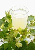 A hops drink and hops umbels