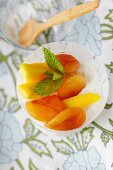 Yogurt with Mango and and Dried Apricots; From Above