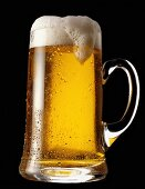 German lager in a glass beer mug against black background