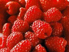 Fresh raspberries (fills the screen)