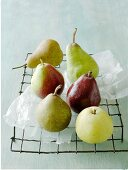 A variety of pears on a cooling rack