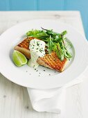 Salmon fillet with lime sauce
