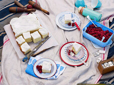 Raspberries and a buttermilk and vanilla cake for a picnic