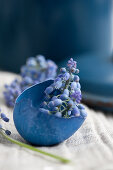 A blue dyed eggshell filled with grape hyacinths