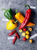 Various peppers with lables