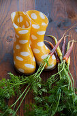 Carrots and wellington boots