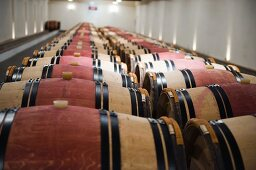 Two rows of barrique wooden barrels in a wine cellar (France)