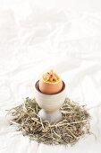 Soft boiled egg with North Sea shrimp