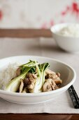 Chicken with bok choy and rice (China)