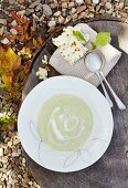 Cold avocado, basil and cucumber soup with chive bread