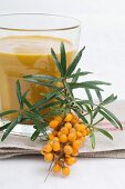 Sea buckthorn branch and juice