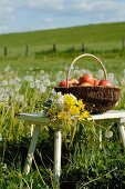 Basket with apples and bunch of flowers in meadow